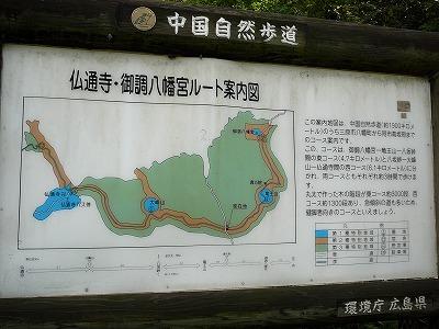 2008_10060163