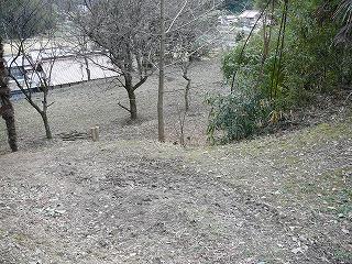 2008_01260010